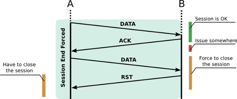 Figure 2 – RST sent to force the end of a TCP session.